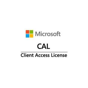 Win Server CAL 2019 (100 User)